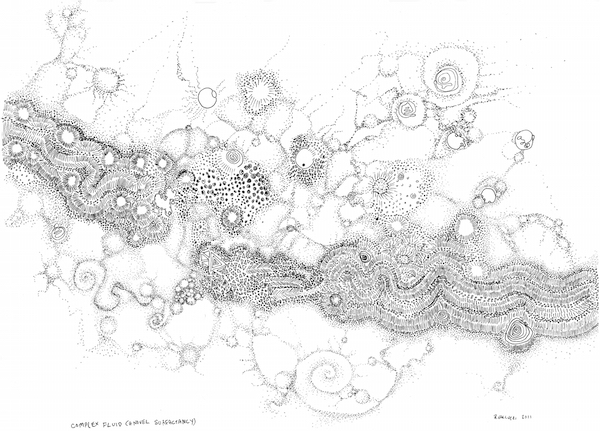 Regina Valluzzi |Complex Fluid (a novel surfactancy), hand-drawn fine line pigmented ink (pen and ink)  approx. 8 x 10 inches  (20 x 25 cm)